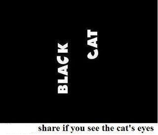 Very Funny ► - Google+ - Do you see the cat's eyes ?? +CATURDAY